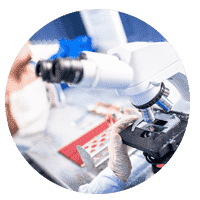 Scientist observing Elixinol CBD oil through a microscope