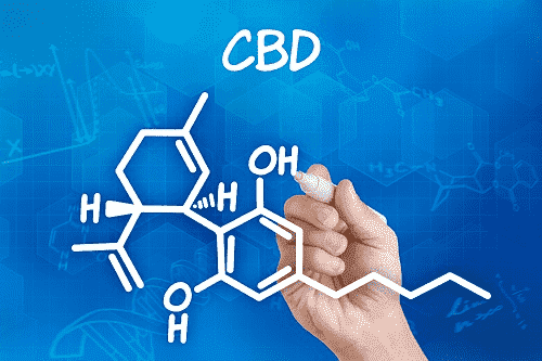 A hand drawing the chemical formula for CBD on a blue background